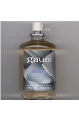 GAUDI POUR HOMME EDT 100 ML.