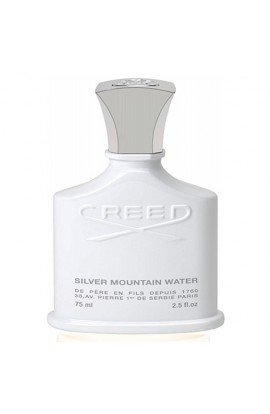 SILVER MOUNTAIN WATER EDT 120 ml.